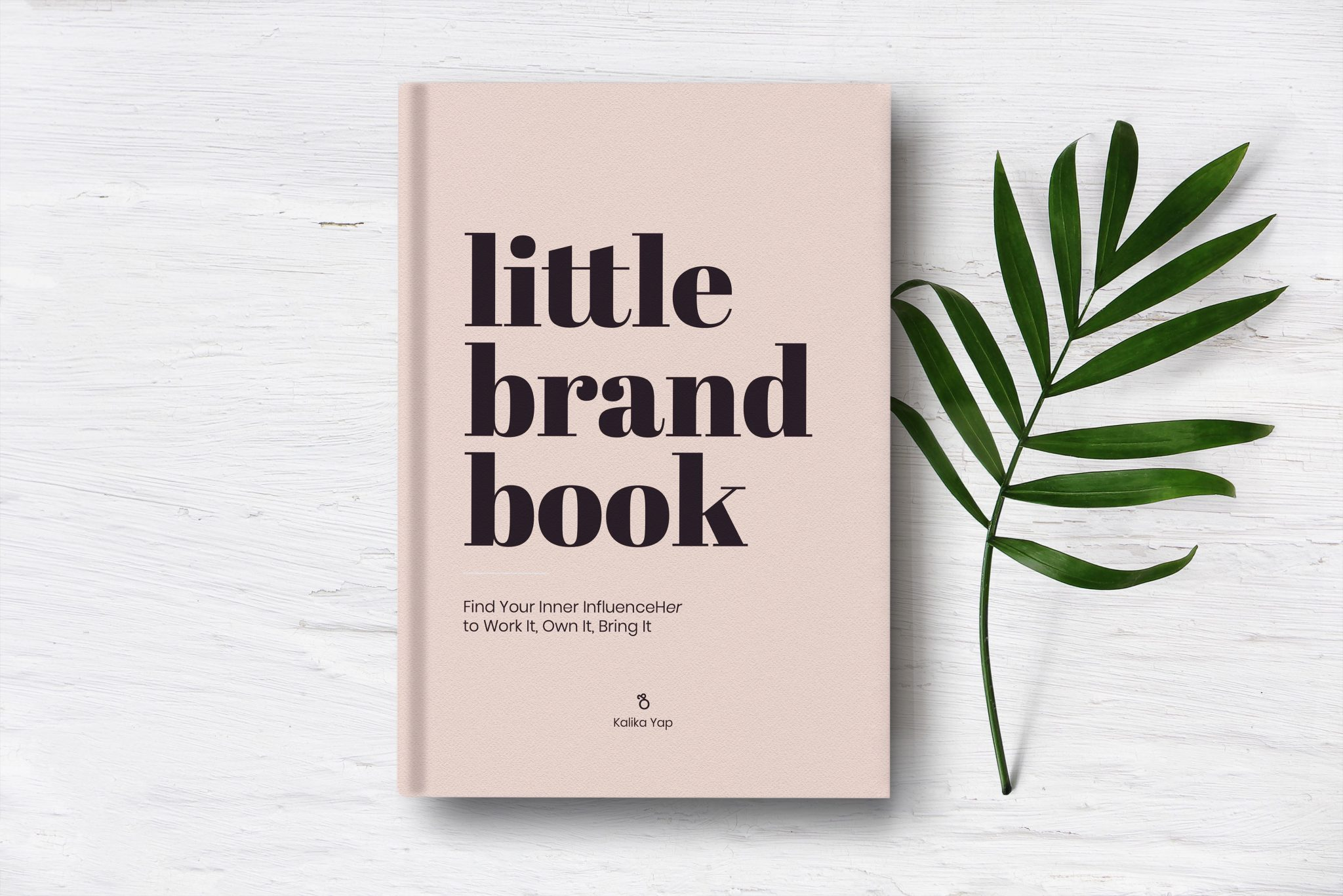 Little Brand Book on Amazon