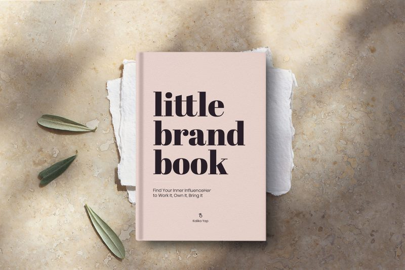 New little brand book featured image